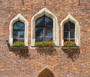 Details of Gothic architecture. Breslau in Poland. Details of Gothic architecture. Nice windows. Breslau in Poland stock images