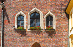 Details of Gothic architecture. Royalty Free Stock Photos