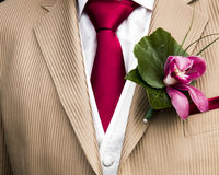 Details of a grooms clothing Royalty Free Stock Photos
