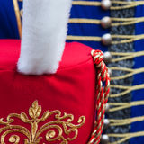 Details of hussar busby hat Royalty Free Stock Image