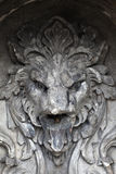 Details of lion fountain Stock Images