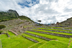 Details Machu Picchu lizenzfreie stockfotos