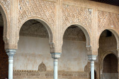 Details of the Myrtles  in  Alhambra. GRANADA, SPAIN - MAY 13, 2016: Details of the Myrtles  in  Alhambra Stock Image
