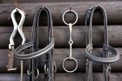 Details Of Diversity Used Horse Reins Royalty Free Stock Images