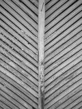 Details on old sticks of an old barn Royalty Free Stock Photography