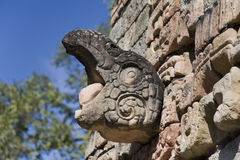 Details of the Ornaments, bird. Ornaments , in the National Park of Copan Ruins in Copan, Honduras. Near the ball court Stock Photos