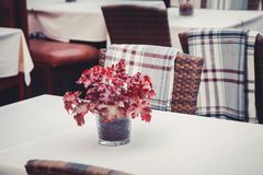 Details of outdoors cafe in Tallinn, Estonia. Bouquet of leaves on table. Stock Images