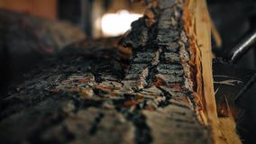 Details of the removal of bark from a log in a sawmill. Detail of the removal of bark from a trunk inside a sawmill stock photography