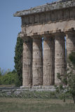Details of the ruins of Paestum Royalty Free Stock Images