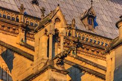 Details of the southern facade of Notre Dame de Paris Cathedral facade with it& x27;s gargoyles in the warm light of sunset. Details of the southern facade of royalty free stock photo