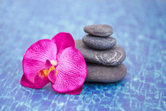 Details of daily spa, stones and orchid Stock Image