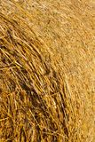 ,details of straw. The details of the straw stack left after harvesting in the field and used for animal husbandry, a large number of mature ears without grains royalty free stock photography