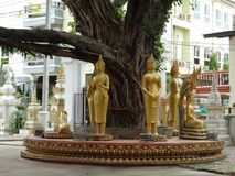 Details van beeldende kunsten bij Boeddhistische tempel royalty-vrije stock foto