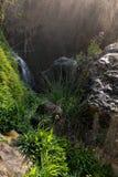 Details van de bronnen van de rivier Algar in Alicante, Spanje Stock Afbeelding