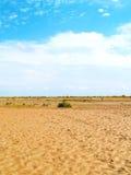 Details van droog rivierbed Stock Foto's