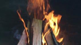Details van een houten brand stock videobeelden
