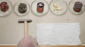 Details van het geologische laboratorium, vele petrischalen met stenen en mineralen, wetenschapsconcept Voorraadlengte bovenkant stock footage