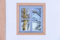 Details van mooi blauw venster en wit huismuur De bezinningen van Nice van bomen in het glas stock fotografie