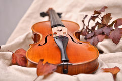 Details of a violin Stock Photos