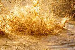 Details von Wassertropfen und -schlamm von einem Spritzen in einer Pfütze in einem Hindernisrennen stockfoto