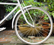 The details of a white bicycle wheel. White bicycle wheel in front of  pots Stock Photos