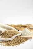 Details of whole grains Royalty Free Stock Photos