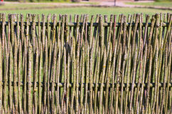 Details of the wooden vine fence in the village. Lithuania Royalty Free Stock Image