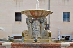 Detalha a arquitetura da cidade Senigallia Catedral Fotografia de Stock