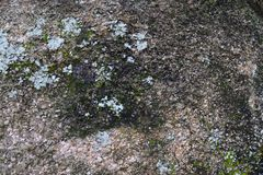 Detalhado perto acima da superfície do asfalto em ruas com pedras e quebras pequenas fotos de stock royalty free