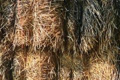 Detalhado perto acima da superfície da palha e do feno vistos em uma exploração agrícola fotografia de stock