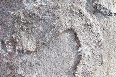 Detalhado perto acima da superf?cie de muros de cimento rachados e resistidos na alta resolu??o foto de stock