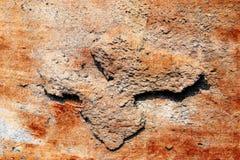 Detalhado perto acima da superf?cie de muros de cimento rachados e resistidos na alta resolu??o fotografia de stock royalty free