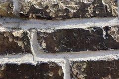 Detalhado perto acima do brickwall envelhecido e resistido colorido na alta resolu??o foto de stock royalty free