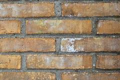 Detalhado perto acima do brickwall envelhecido e resistido colorido na alta resolu??o fotografia de stock
