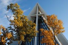 Detalhe ártico da catedral Fotografia de Stock Royalty Free