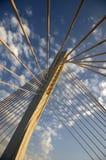Detalhe 37 da ponte Fotografia de Stock