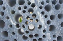 Detalhe arquitetónico Fotografia de Stock
