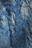 Detalhe da árvore com cor azul fotos de stock