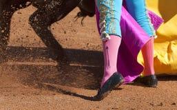 Detalhe da captação de toureiro fotografia de stock royalty free