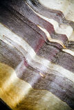 Detalhe da casca de árvore da goma Fotografia de Stock Royalty Free