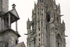 Detalhe da catedral de Chartres Imagens de Stock