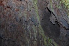 Detalhe da caverna fotografia de stock royalty free