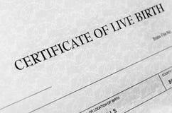 Detalhe da certidão de nascimento Foto de Stock Royalty Free