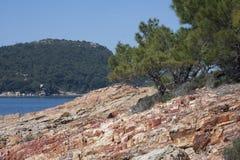 Detalhe da costa de Aegan Fotos de Stock