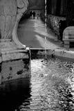 Detalhe da fonte com pouca queda da água, preto e branco Imagens de Stock