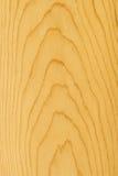 Detalhe da madeira de pinho Imagens de Stock