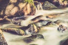 Detalhe da natureza de água de fluxo imagem de stock