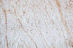 Detalhe da parede da pedra calcária Fotos de Stock