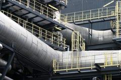 Detalhe da planta ardente waste Imagem de Stock