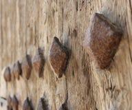 Detalhe da porta de Valencia Torres de Serranos Fotos de Stock